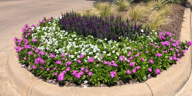 Annual flower installation, mulch, shrub trimming and pruning services