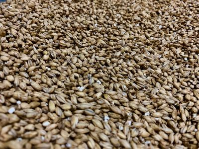 2-Row malted barley ready to be added to a freshly constructed beer kit.