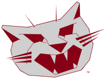 BADCAT Ultra-Distance Triathlon