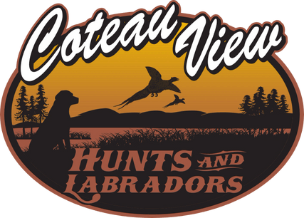 Coteau View Hunts