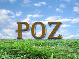 POZ Engineering & Environmental, P.C.