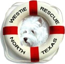 Westie Rescue of North Texas
