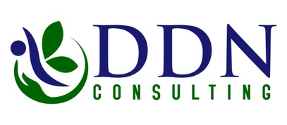 DDN Consulting Services