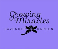 Growing Miracles Lavender Garden