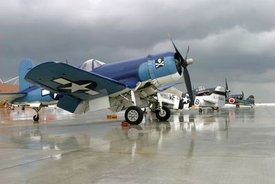 A row of warbirds on the tarmac
