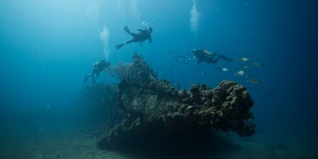Dive sites: RMS Rhone bow