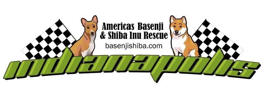 Americas Basenji And Shiba Inu Rescue