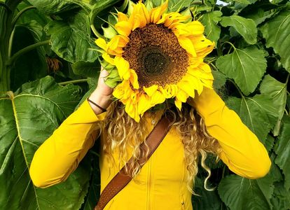 This is a bright photo of a girl holding a large sunflower in front of her face to promote Ella Kerr