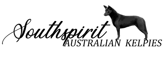 Southspirit Kennels
