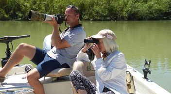Bird watching holiday Spain, birding in Spain, bird watching on the Ebro delta, birding tours