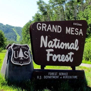 Grand Mesa National Forest Entrance