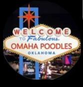 OMAHA POODLES