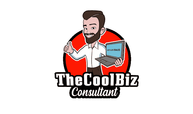 The Cool Biz Consultant