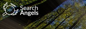 Search Angels