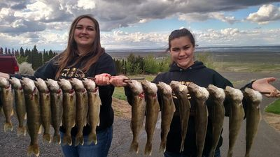 A nice catch of walleye for owner Shelby Ross' daughters.