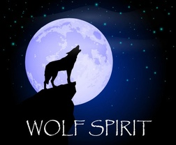 Wolf Spirit Wellness and Counseling Center, LLC