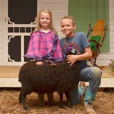 Livestock competition featuring a 2019 leadline contestant and her ewe.
