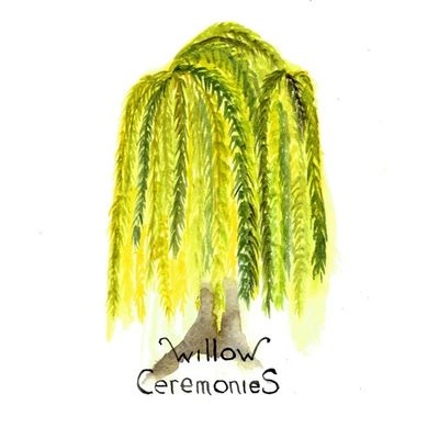 Willow Ceremonies beautiful logo - A watercolour painted by my favourite Welsh artist