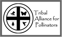 Tribal Alliance for Pollinators