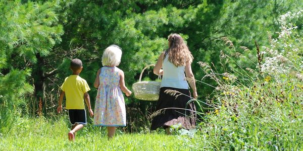 A harvesting adventure with Grandbabies