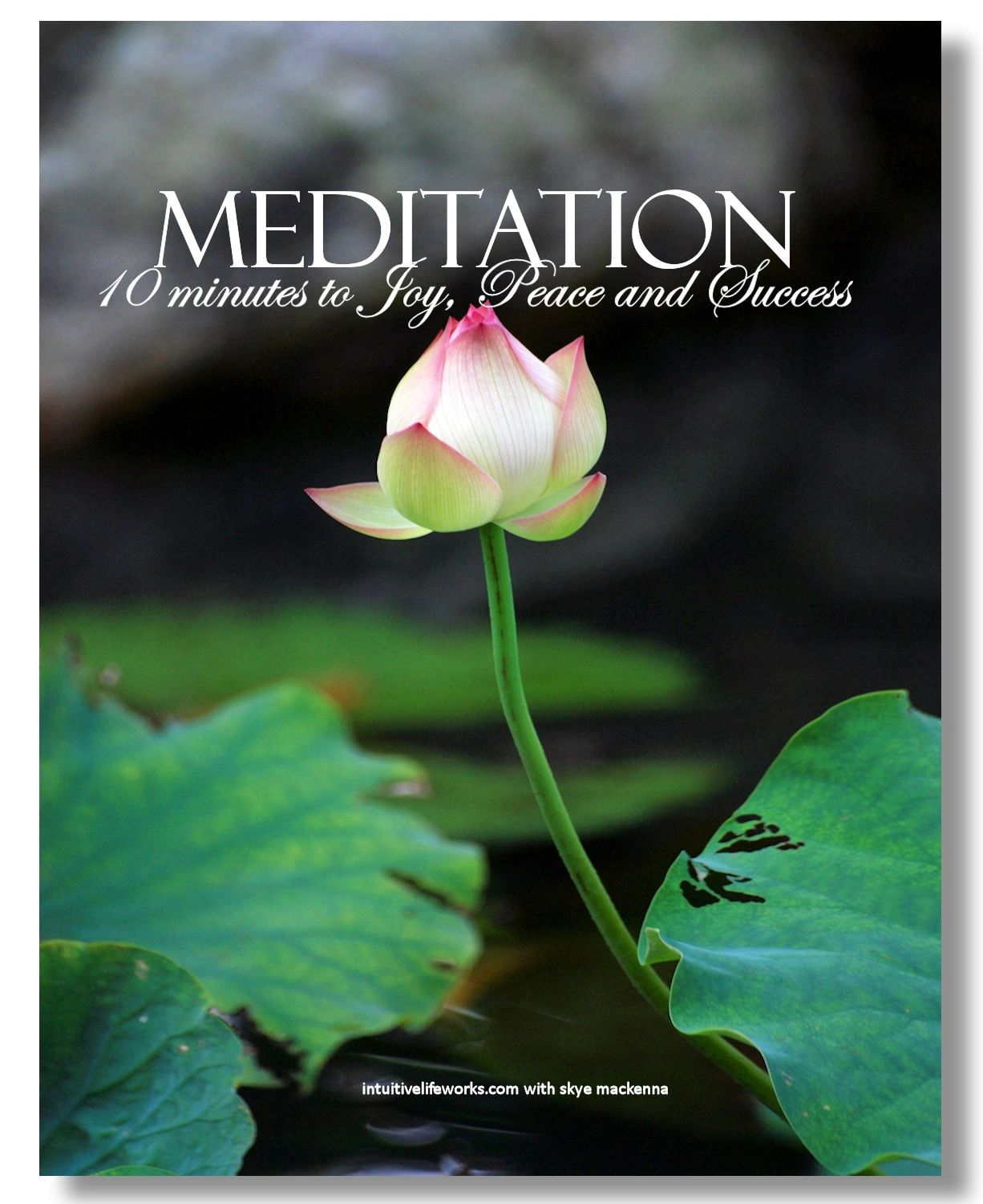 meditation for joy, peace and success ebook