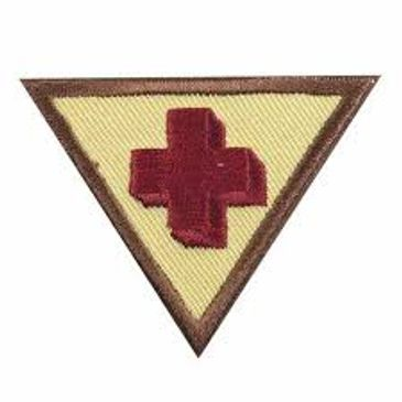 Girl Scout Brownie First Aid Try-It badge Requirements