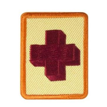 Girl Scout Senior Older Girl First Aid badge Requirements