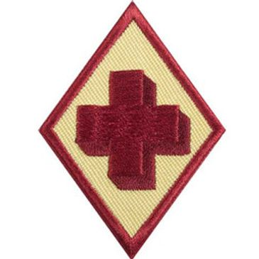 Girl Scout Cadette Older Girl First Aid badge Requirements