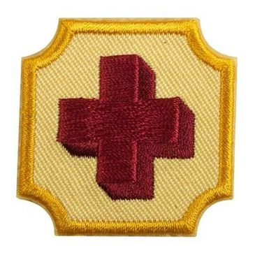 Girl Scout Ambassador Older Girl First Aid badge Requirements