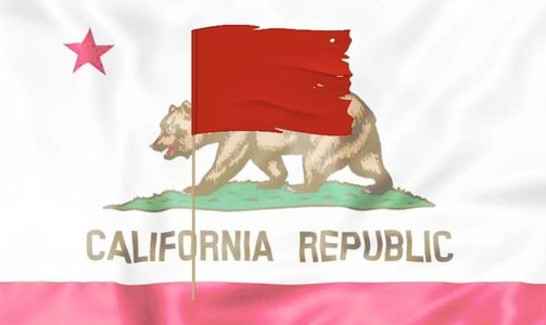 California Red Flag Gun Law 2nd Amendment Constitutional Right stripped citizens without due process