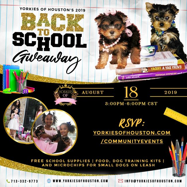 school supplies, free school supplies, Amazing Paws, Yorkies of Houston, pet store, Yorkies, puppies