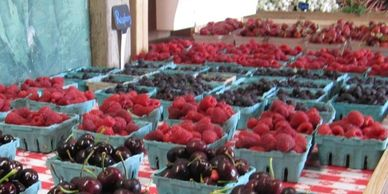 Local berries, farm fresh from our farm and our local farm partners.