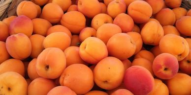 Beautiful apricots for our farm stand from our friends at Smallwood Farms.