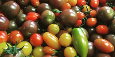 cherry tomato mix for our wholesale produce list