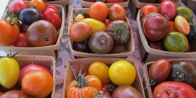 Gorgeous tomatoes are just one of the many organic vegetables we grow on our Snohomish Valley farm stand.