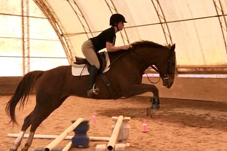 Female English rider jumping brown horse over ground poles in indoor arena.