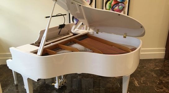 White baby grand piano in Fort Lauderdale  that costs almost 50% less than the competition charges.