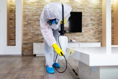 Cleaner decontaminating house