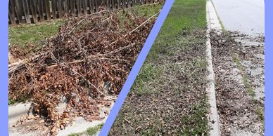 Yard Waste clean up High Point,NC.