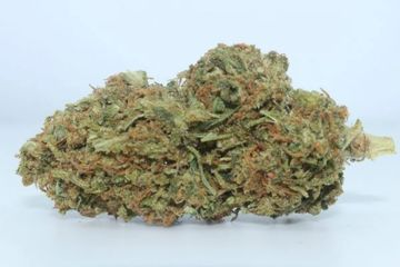 Orange creamsicle cbd flower on blue textile