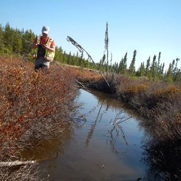 Habitat assessment can assist with regulatory review such as getting an AHPP or a DFO review.