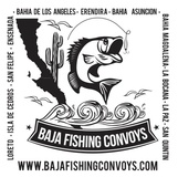 Baja Fishing Convoys