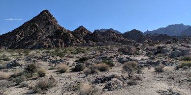 Hiking in the far east of Joshua Tree National Park.  The Coxcomb Mountains.