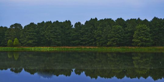 Stay A While's own fishing pond. Contains plenty of Large-mouth Bass, Perch, Brim, and Catfish.