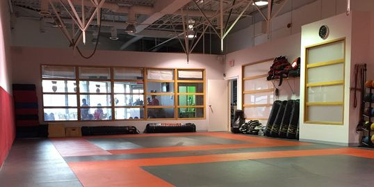 Zen Mixed Martial Arts Training Area.