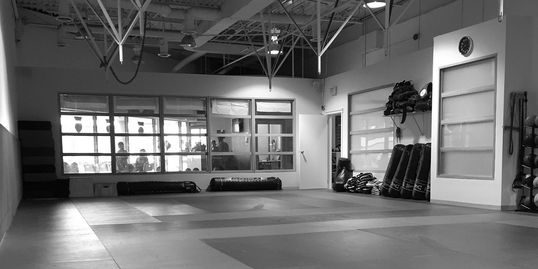 Zen Mixed Martial Arts Training Area