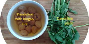 balanced therapeutic effects - making dandelion tea with longan