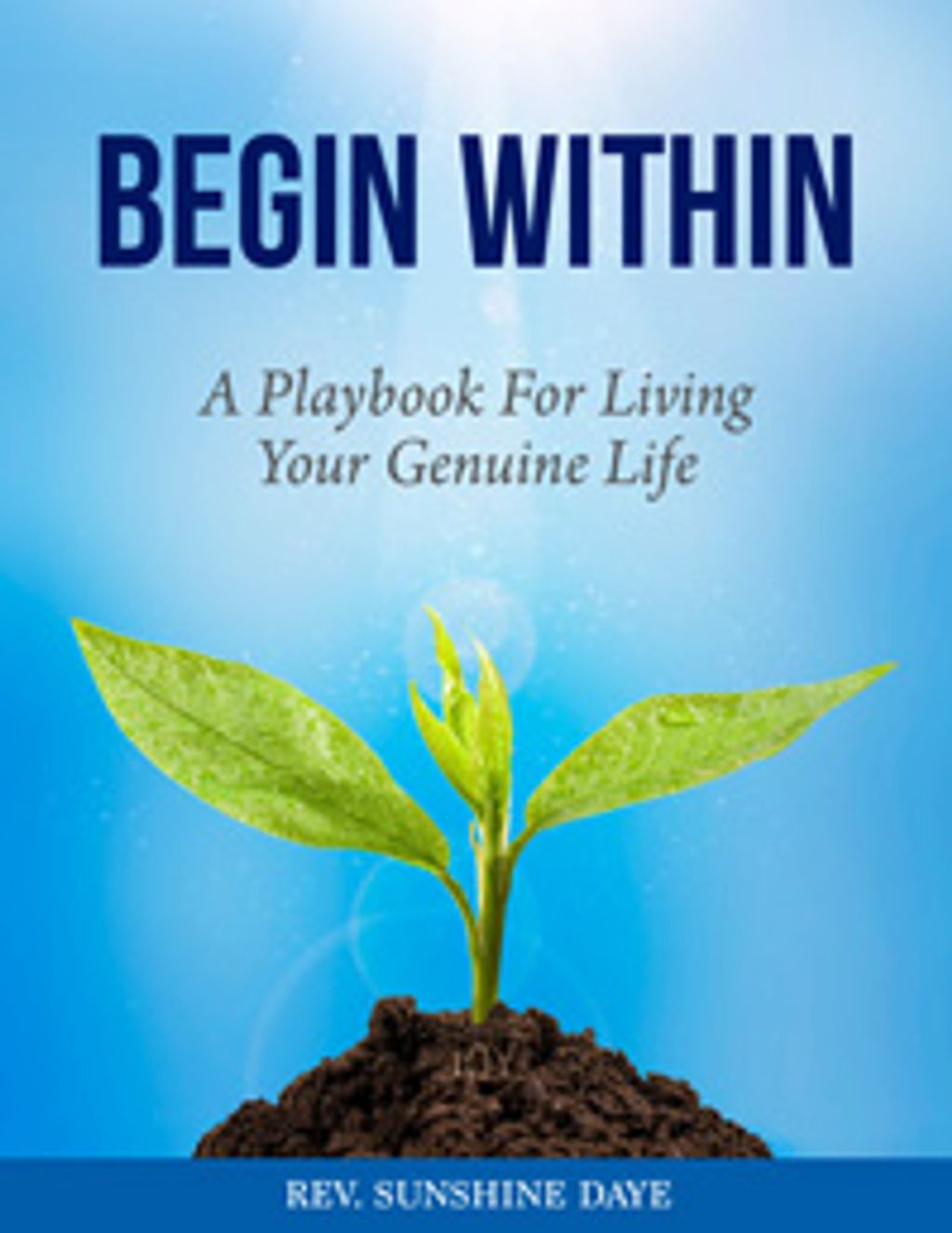 Book cover for BEGIN WITHIN a playbook for genuine living