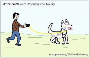 Walk 2020 with norway the husky