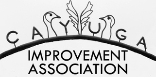 Cayuga Improvement Association